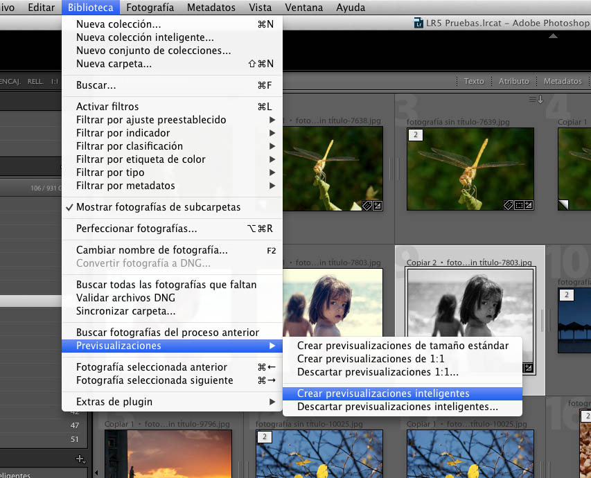 previsualizaciones inteligentes lightroom 5